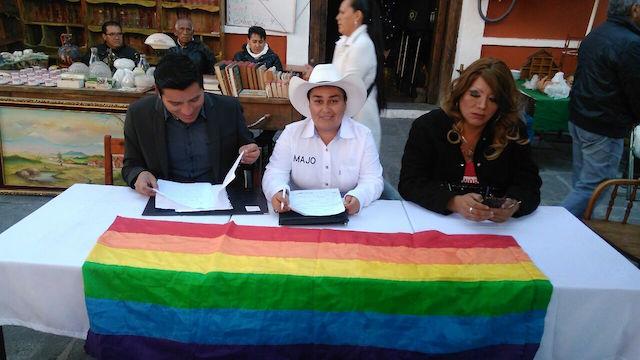 APPS se pronuncia a favor de la reforma del artículo 294 del Código Civil para permitir el matrimonio igualitario