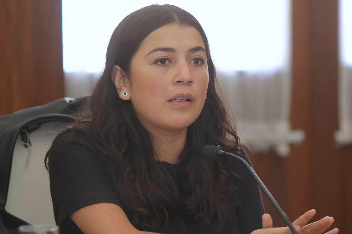 Por falta de acuerdos no se pudo reconocer el contrato conyugal entre parejas del mismo género: Vianney García