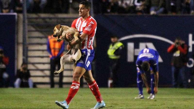 Atlético San Luis presentó a 'Tunita', perro que se coló vs Cruz Azul