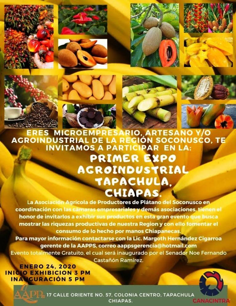Lista la 1ª Expo Agroindustrial Tapachula 2020
