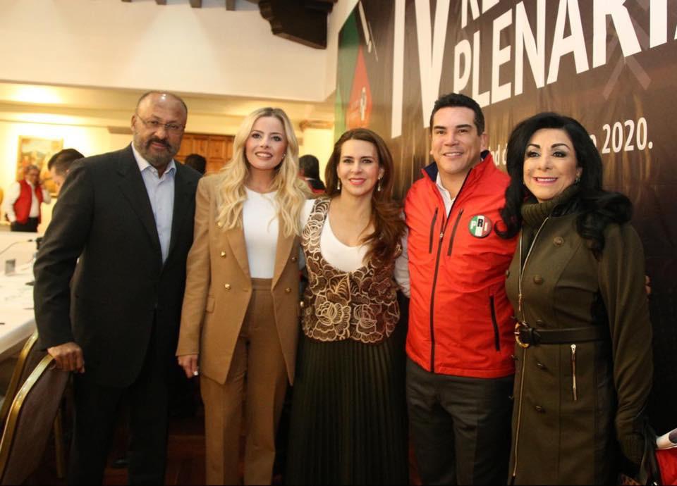 Participa Lucero Saldaña en IV Reunión Plenaria
