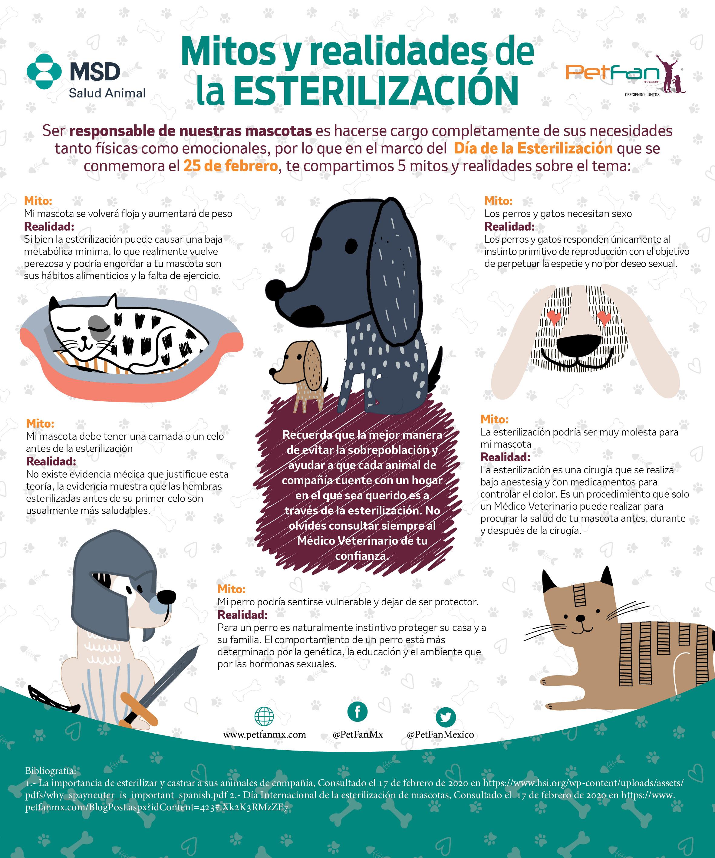 ¿Sabías que un perro sin esterilizar tiene una descendencia  de hasta 33 mil cachorros?