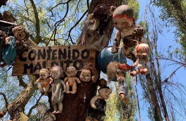 Leyendas de terror mexicanas para morir de miedo – La isla de las muñecas