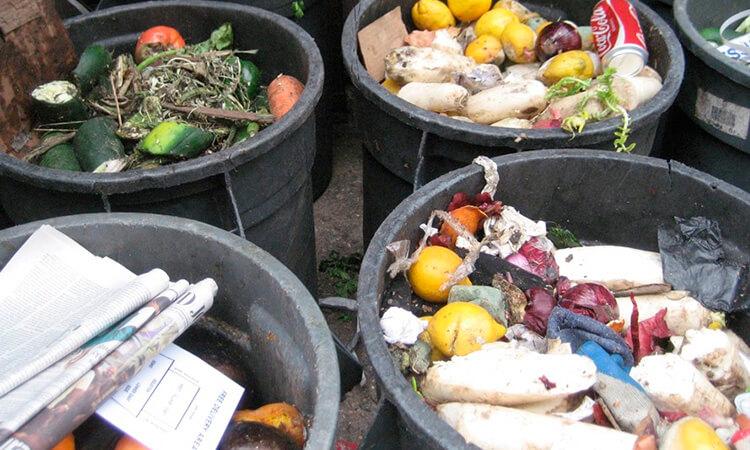 Mientras 7.50 millones de mexicanos padecen hambre, se desperdician 20.5 millones de toneladas de alimentos