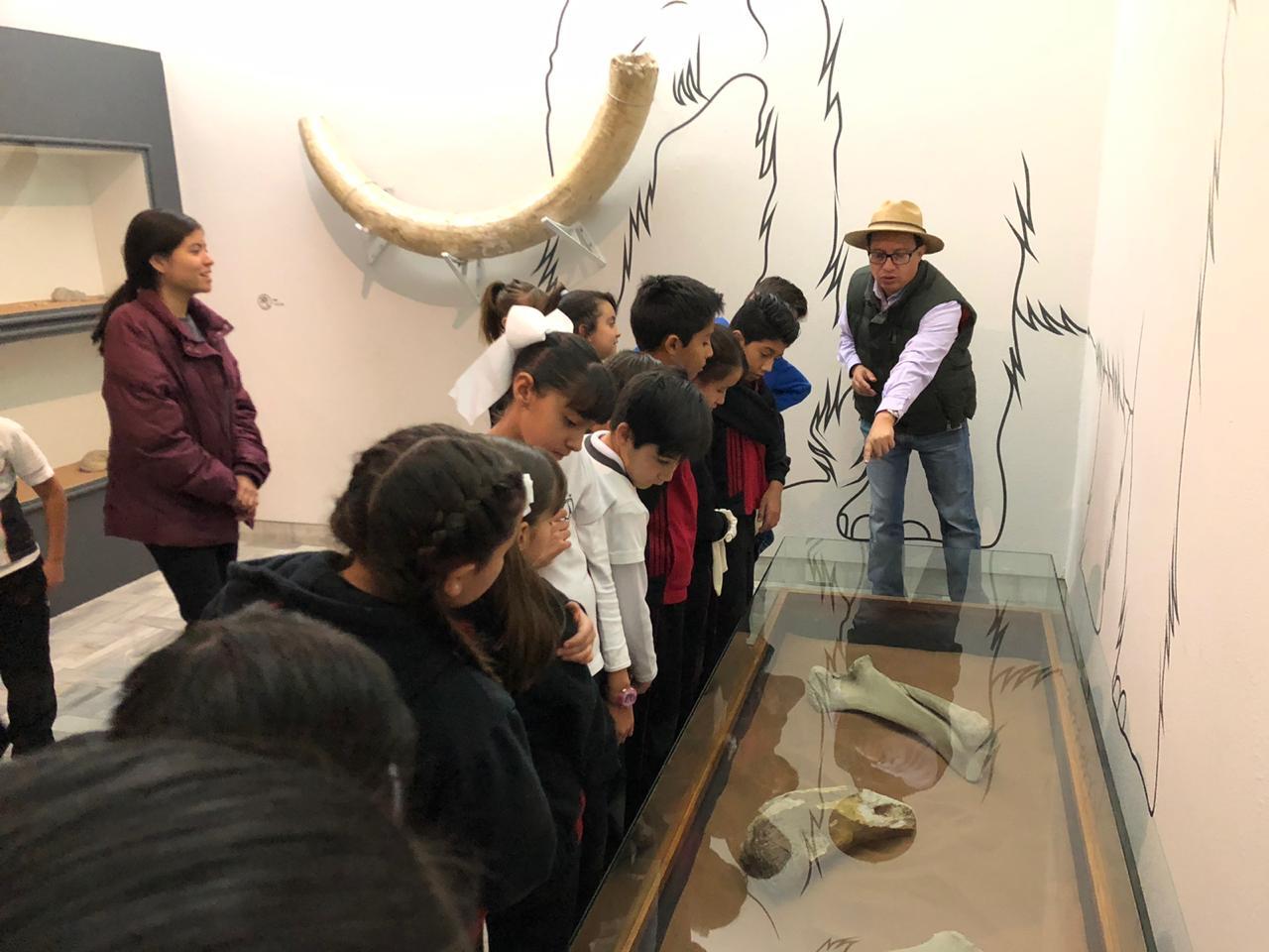 Recorridos guiados los miércoles del mes en el Museo Francisco Cossío