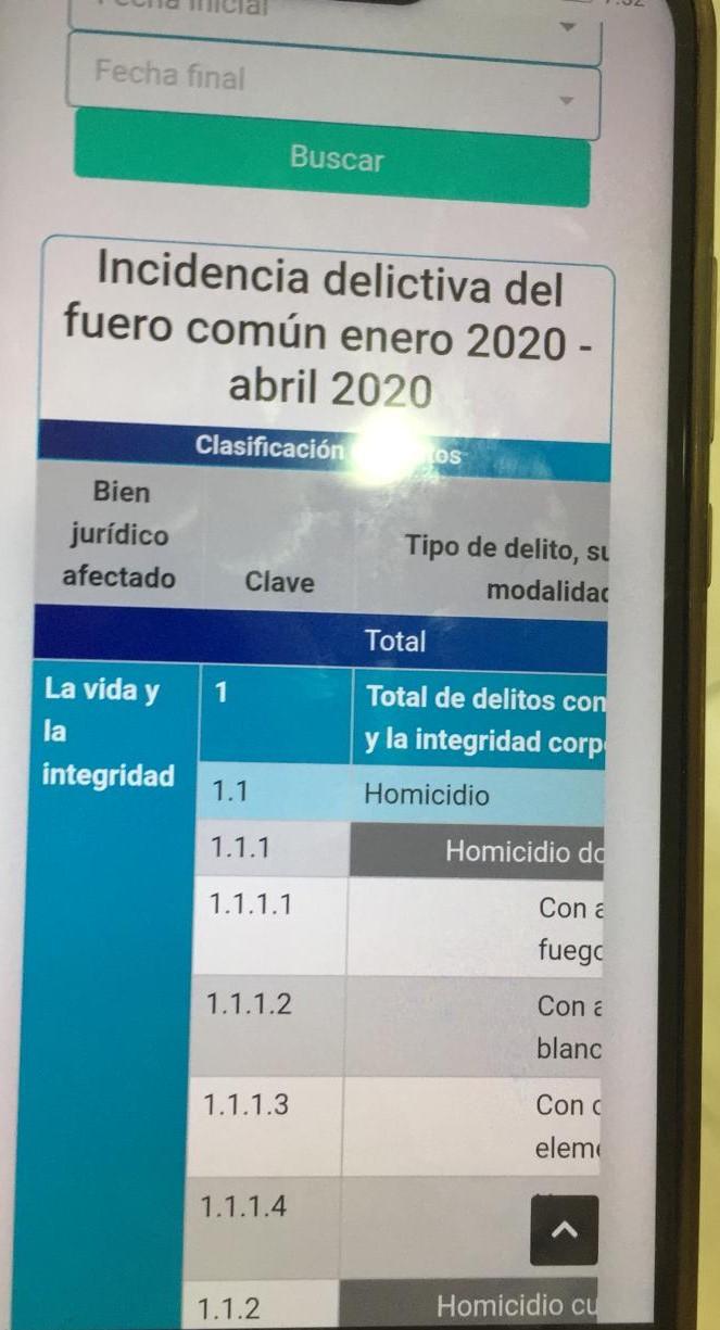 25 feminicidios en Puebla en el primer cuatrimestre de 2020; 8 de ellos en marzo-abril durante la contingencia Covid19
