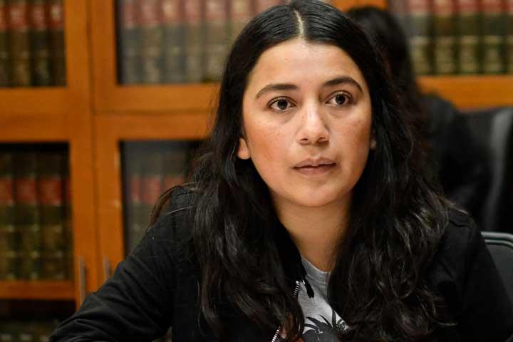 Buscan castigar la violencia política de género para que infractores no sean candidatos
