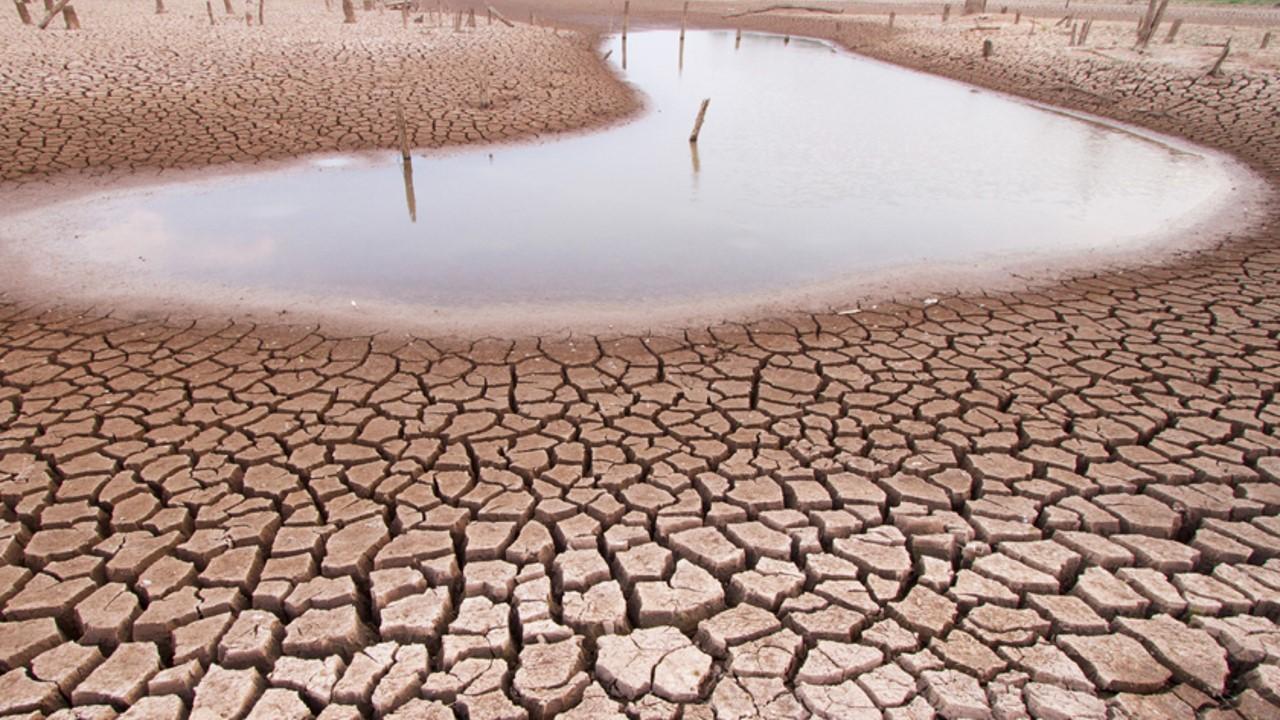 Cómo adaptarse al cambio climático en medio de la crisis del COVID 19