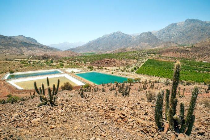 Los derechos al agua y la salud deben estar por encima de los intereses económicos en Chile