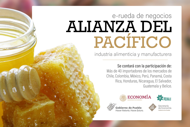 Participan 5 empresas poblanas en E-Rueda de Negocios Intra-Alianza