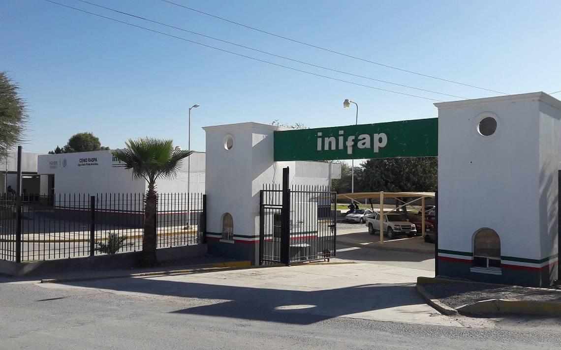 El INIFAP desarrolla vacunas de nueva generación para la porcicultura