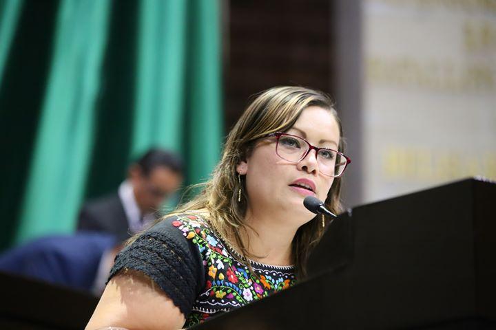 Hemos avanzado en reformas necesarias en materia de movilidad humana e infancia migrante: Julieta Vences
