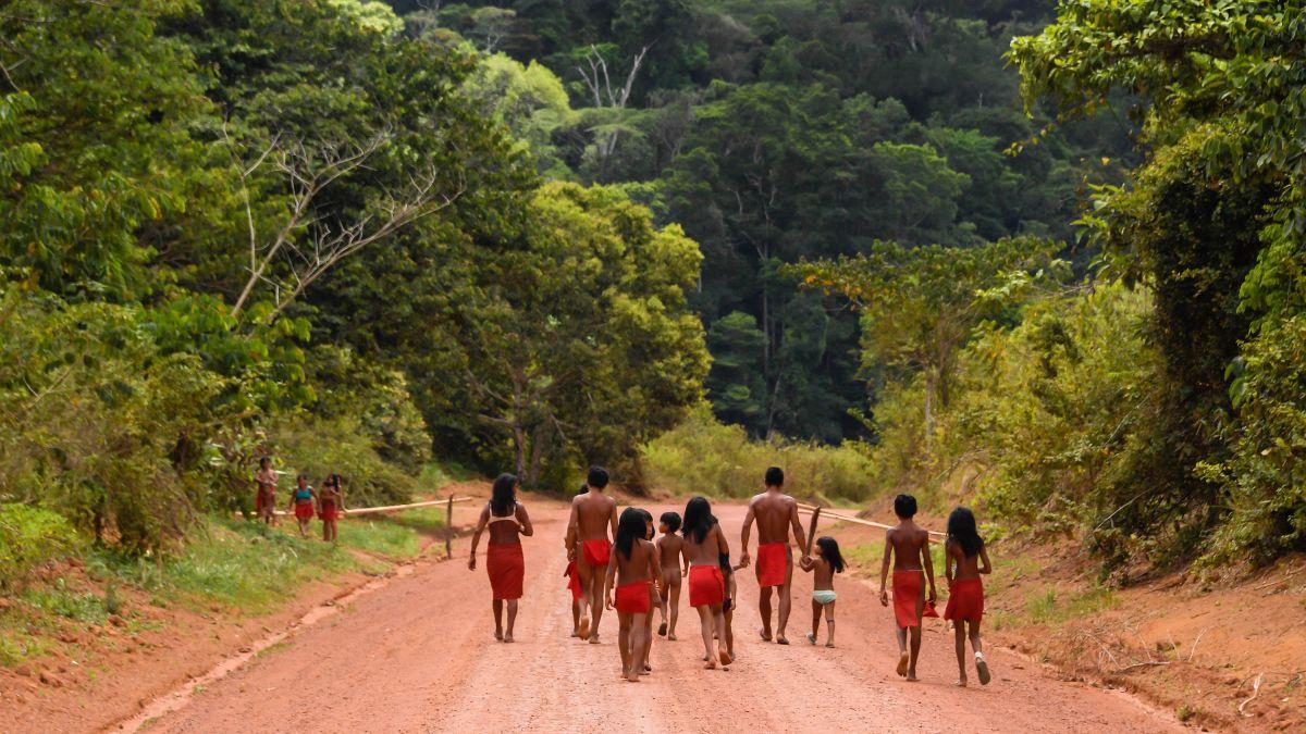 COVID-19 ya alcanza a la mitad de los pueblos indígenas de Brasil