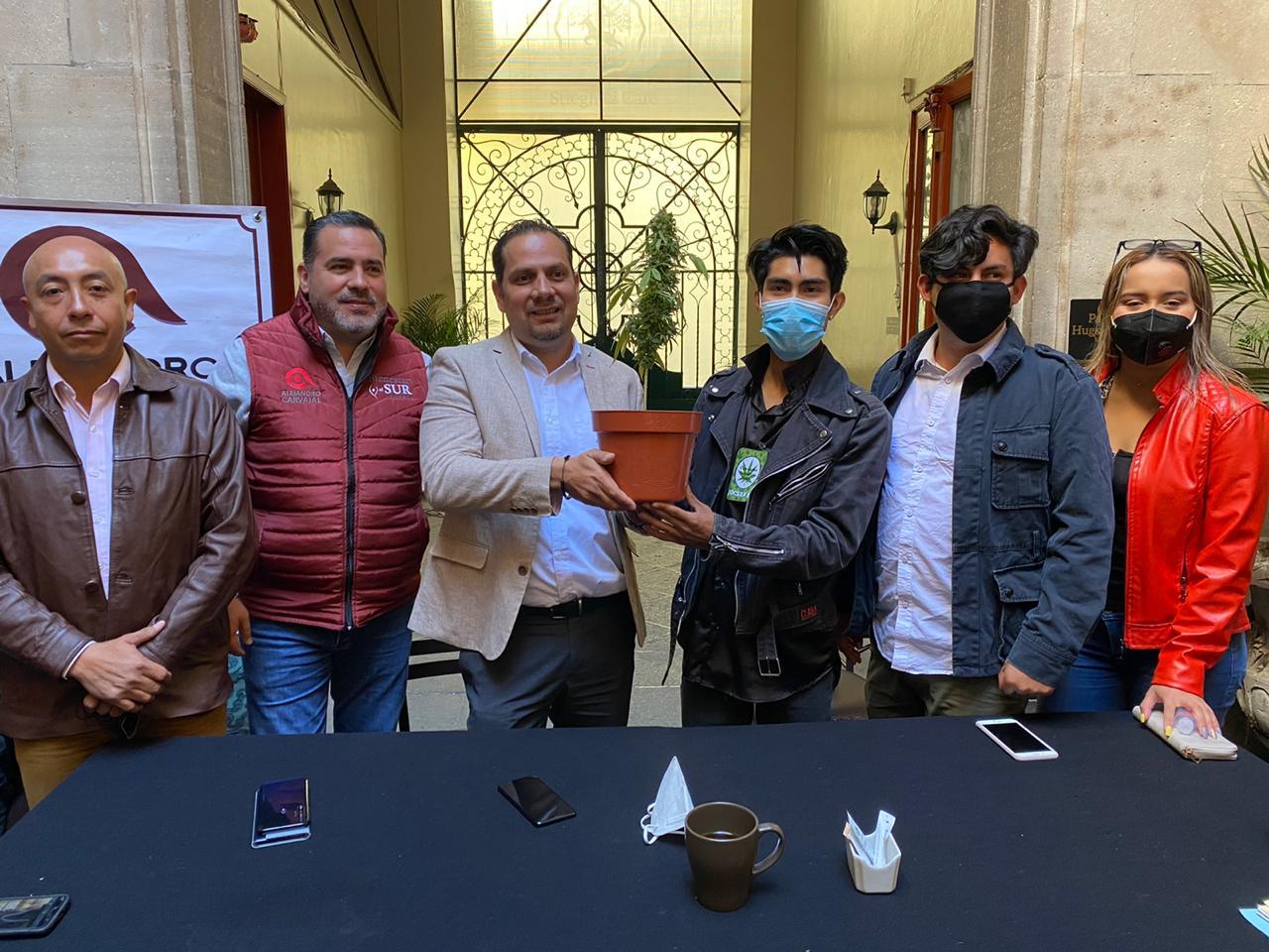 Habrá multas económicas y penales para quienes porten más de 28 gramos de marihuana: Carvajal Hidalgo