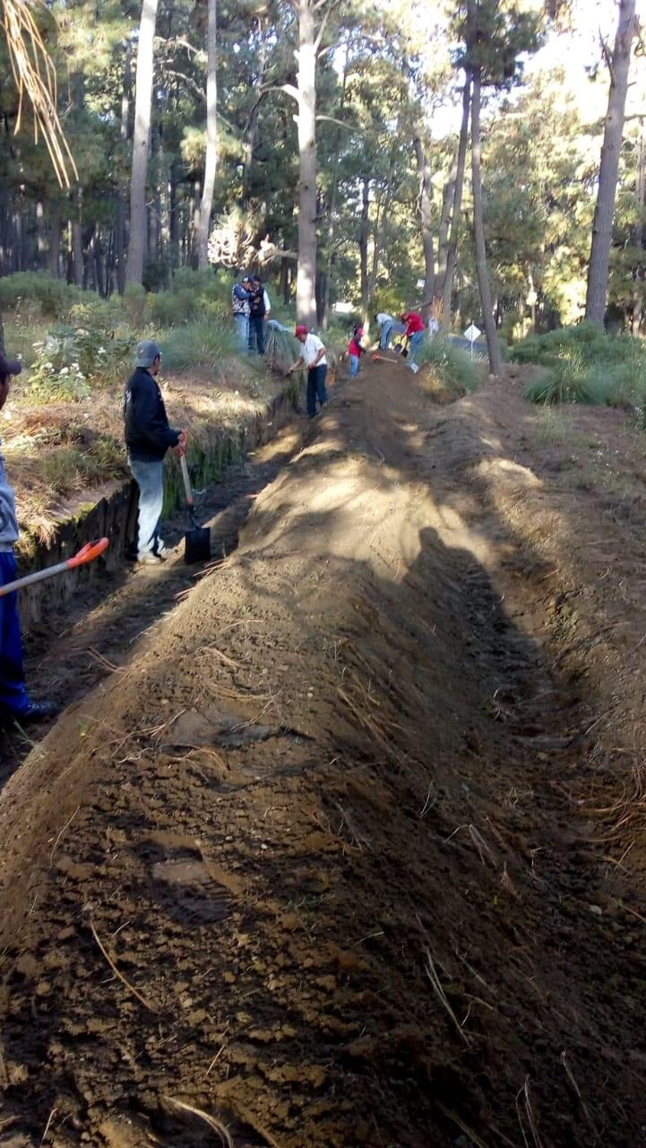 Realiza CGE trabajos de sanidad forestal en Chiautempan