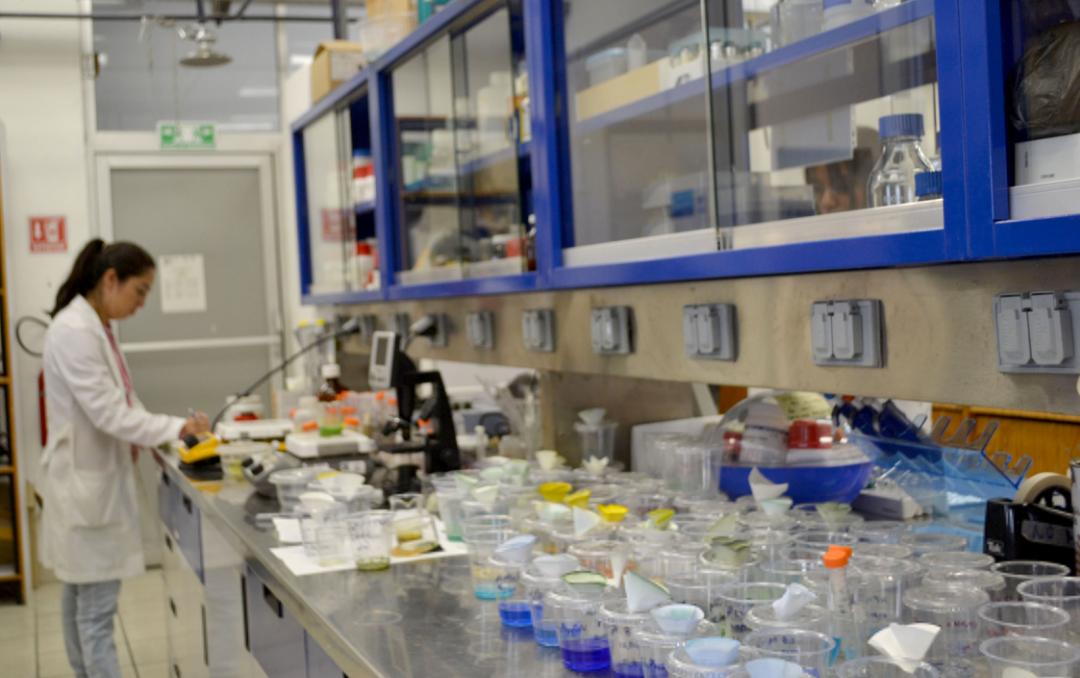 ICUAP forma recursos humanos de calidad en el área de Microbiología