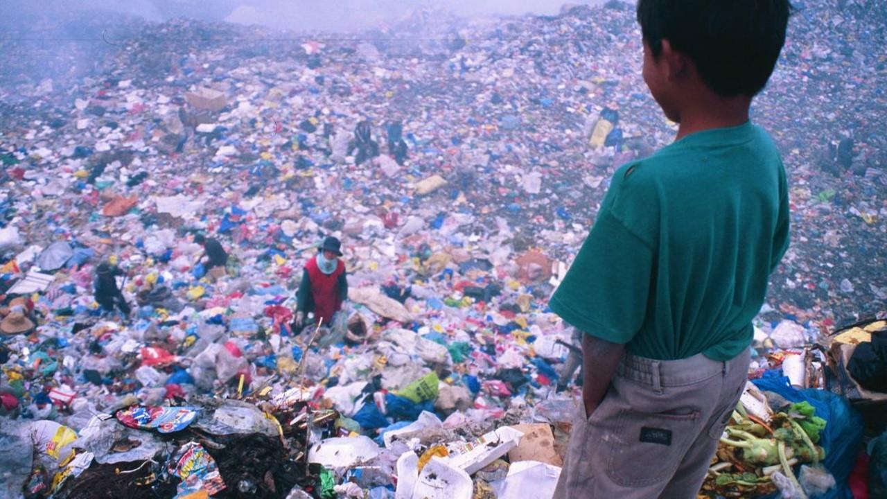 ¿Por qué cuidar el medio ambiente es benéfico para la lucha contra el COVID-19?