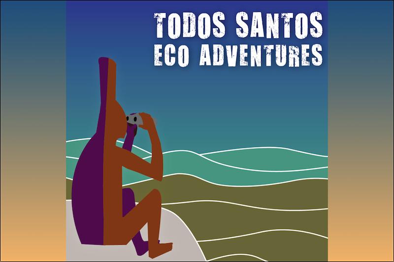 Empresa turística denuncia a funcionaria de Baja California Sur por abuso de poder y malos manejos