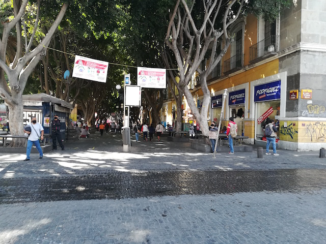 Regidora Silvia Tanús señala que ayuntamiento permite ambulantes para ganar votos para el proceso electoral