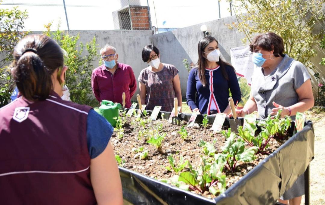 Ayuntamiento de Puebla benefició a 135 personas adultas mayores con módulos de producción alimentaria