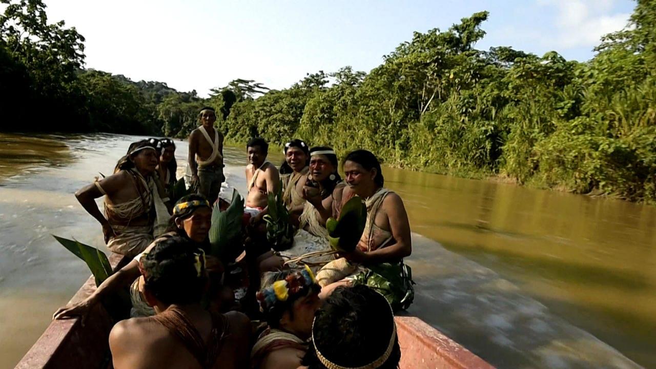 Los pueblos indígenas latinoamericanos sufren cada vez más presiones pese a su papel crucial contra el cambio climático