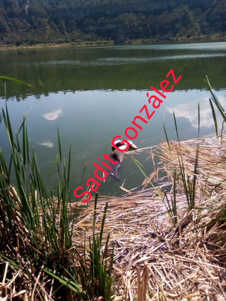 Encuentran cadáver flotando en la laguna de Aljojuca