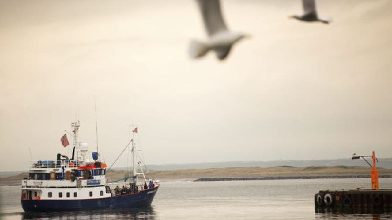 Pesca: el PE pide videovigilancia obligatoria en algunos buques