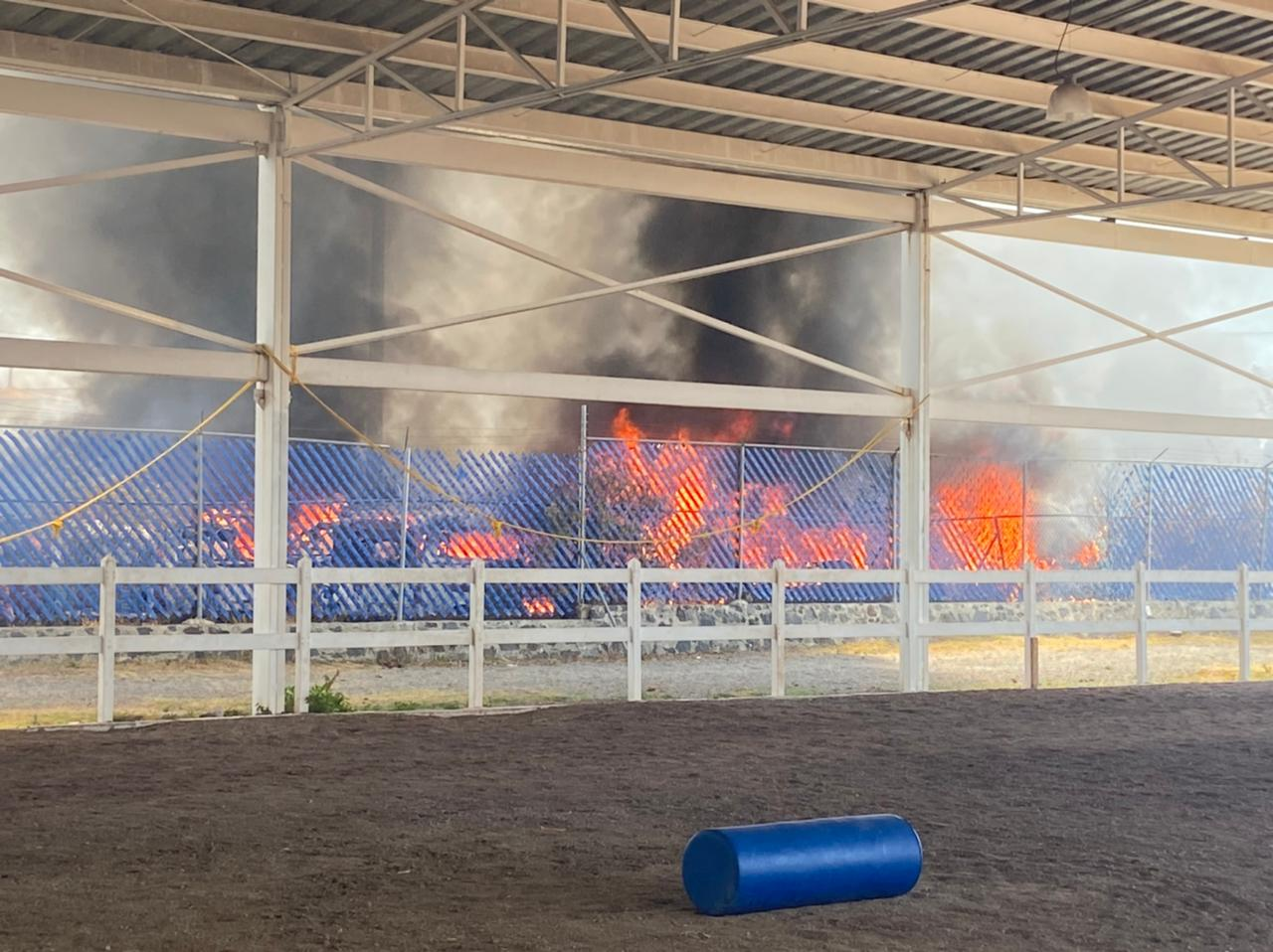 DIF municipal niega que su equipo haya sido afectado por el incendio en las inmediaciones del centro de Equinoterapia