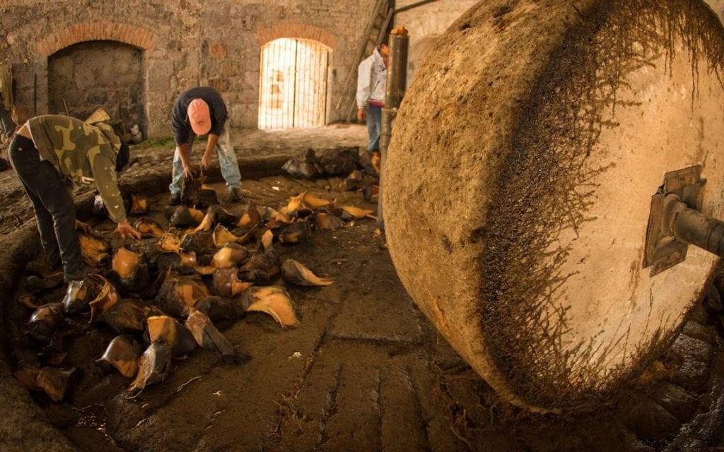 Antecedentes históricos del mezcal en Salinas del Peñón Blanco