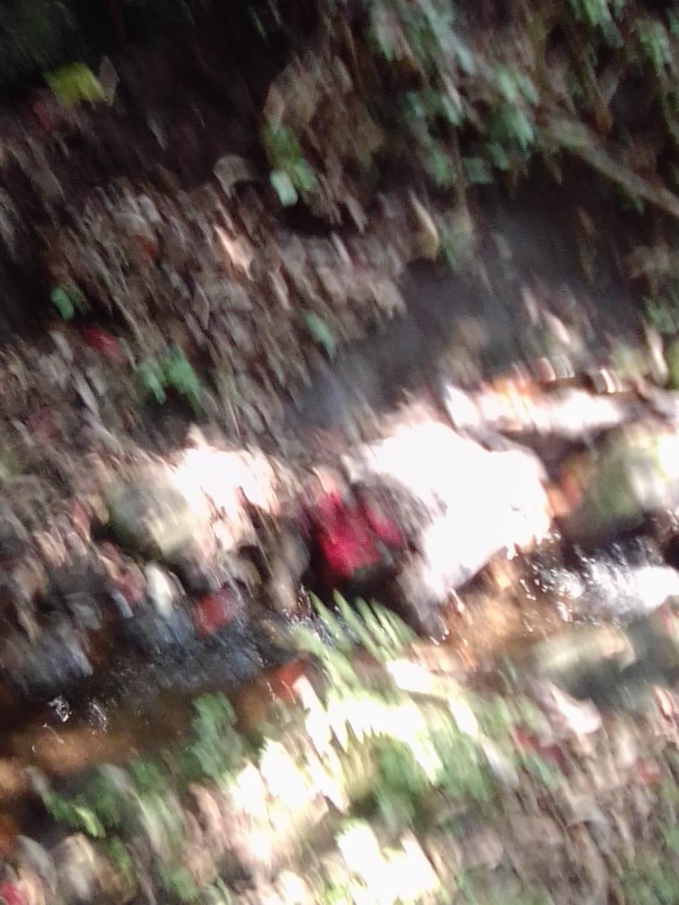 En la colonia 5 de Octubre de Huauchinango, localizan cadáver descompuesto de una fémina no identificada