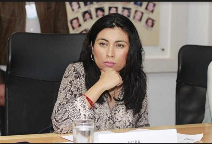 Congreso local, todavía sin fecha para despenalizar el aborto y rechaza apresurar el tema, indicó Nora Merino