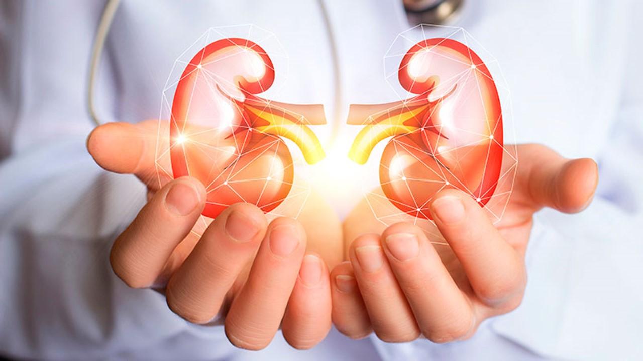 La pandemia de la COVID impulsa el consorcio internacional de pacientes renales que buscan innovaciones en la atención
