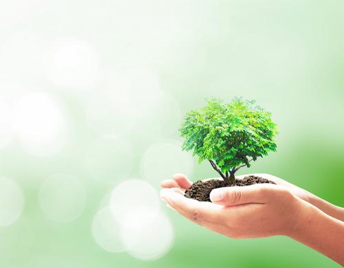 La sostenibilidad, clave para la supervivencia de las empresas