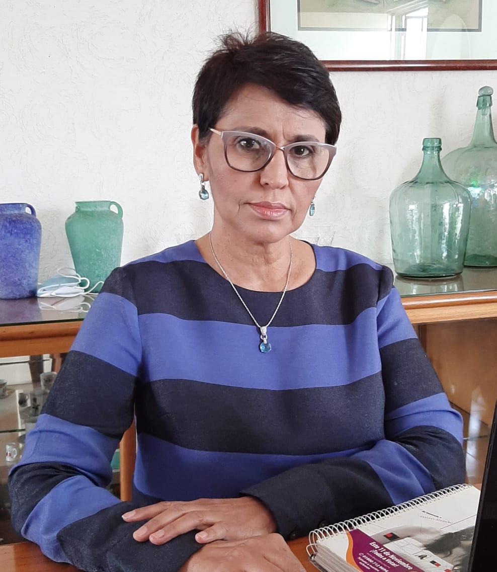 Muciño Muñoz volverá a presentar iniciativa contra infiltrados en manifestaciones