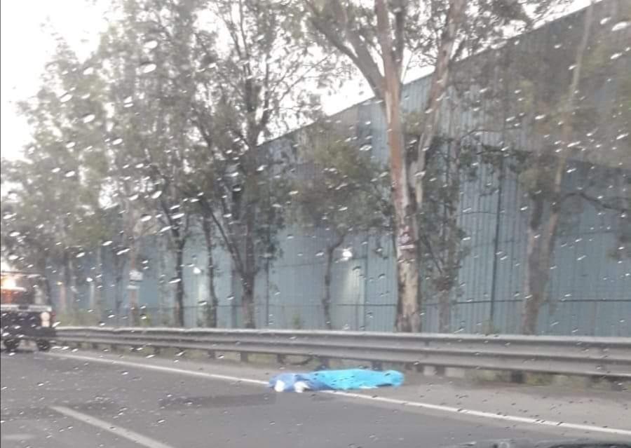 Muere arrollado al intentar cruzar la autopista Puebla-Orizaba