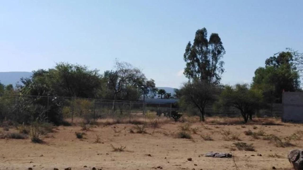 En Tepeojuma, hermanos y cómplices se apoderan de casas y terrenos que no son suyos