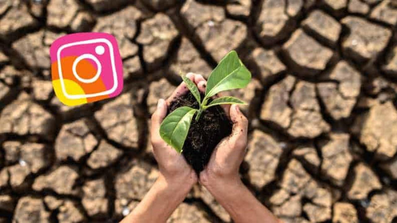 Instagram, un aliado para el activismo  medioambiental