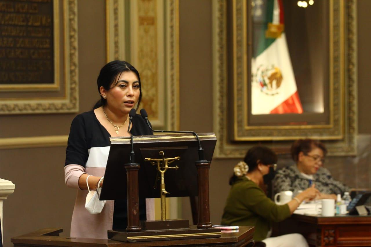 La Ley de Interrupción Legal del Embarazo y la Ley de Desaparecidos serán temas de la siguiente Legislatura, confirmó Nora Escamilla