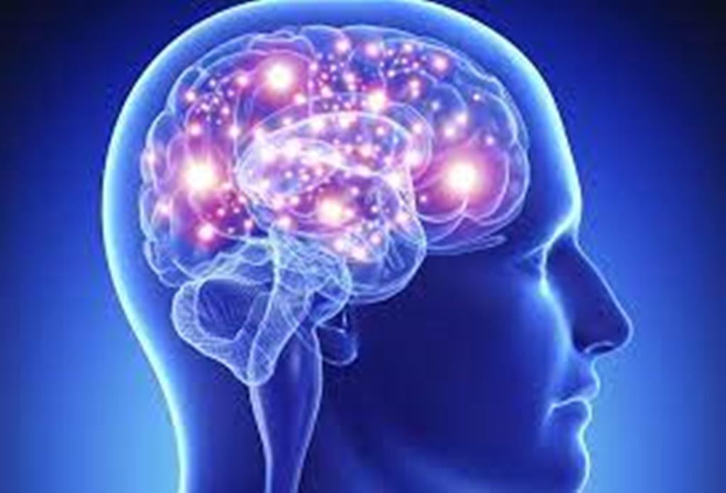 Especialistas advierten sobre las principales enfermedades cerebrales