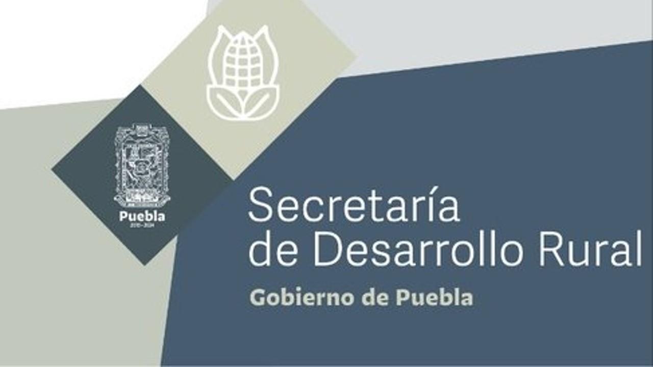 SDR entrega certificado de buenas prácticas agrícolas a productores de la Sierra Norte