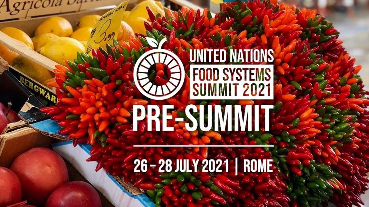 Líderes italianos y ruandeses se unen al llamamiento urgente para transformar los sistemas alimentarios del mundo en el inicio de la Pre-Cumbre de Sistemas Alimentarios de la ONU