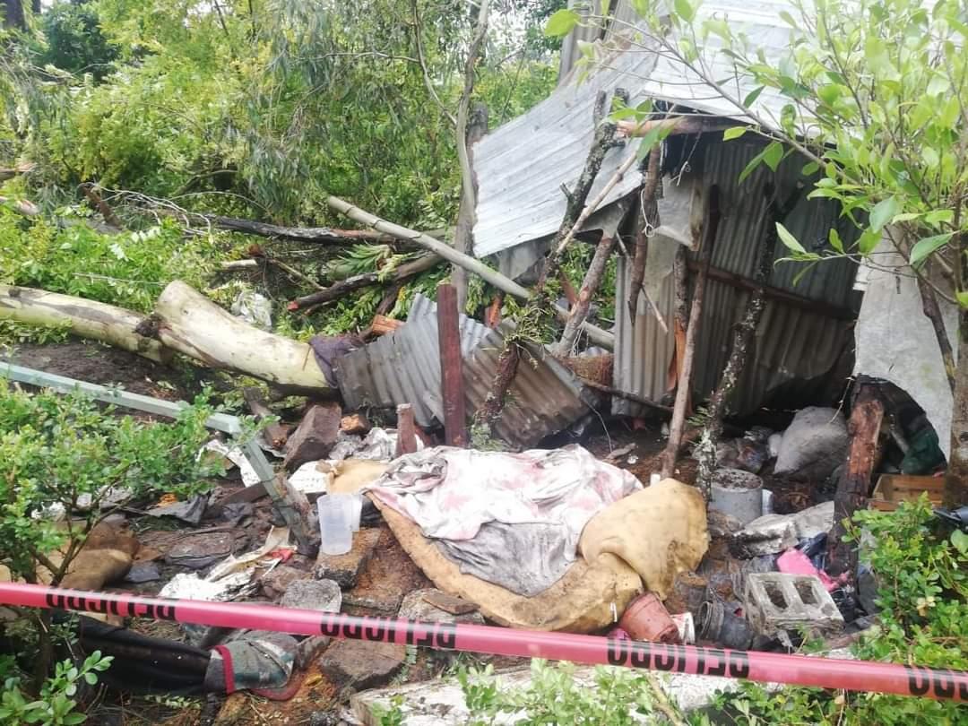 Fotonota: Muere en Huauchinango aplastado por un árbol
