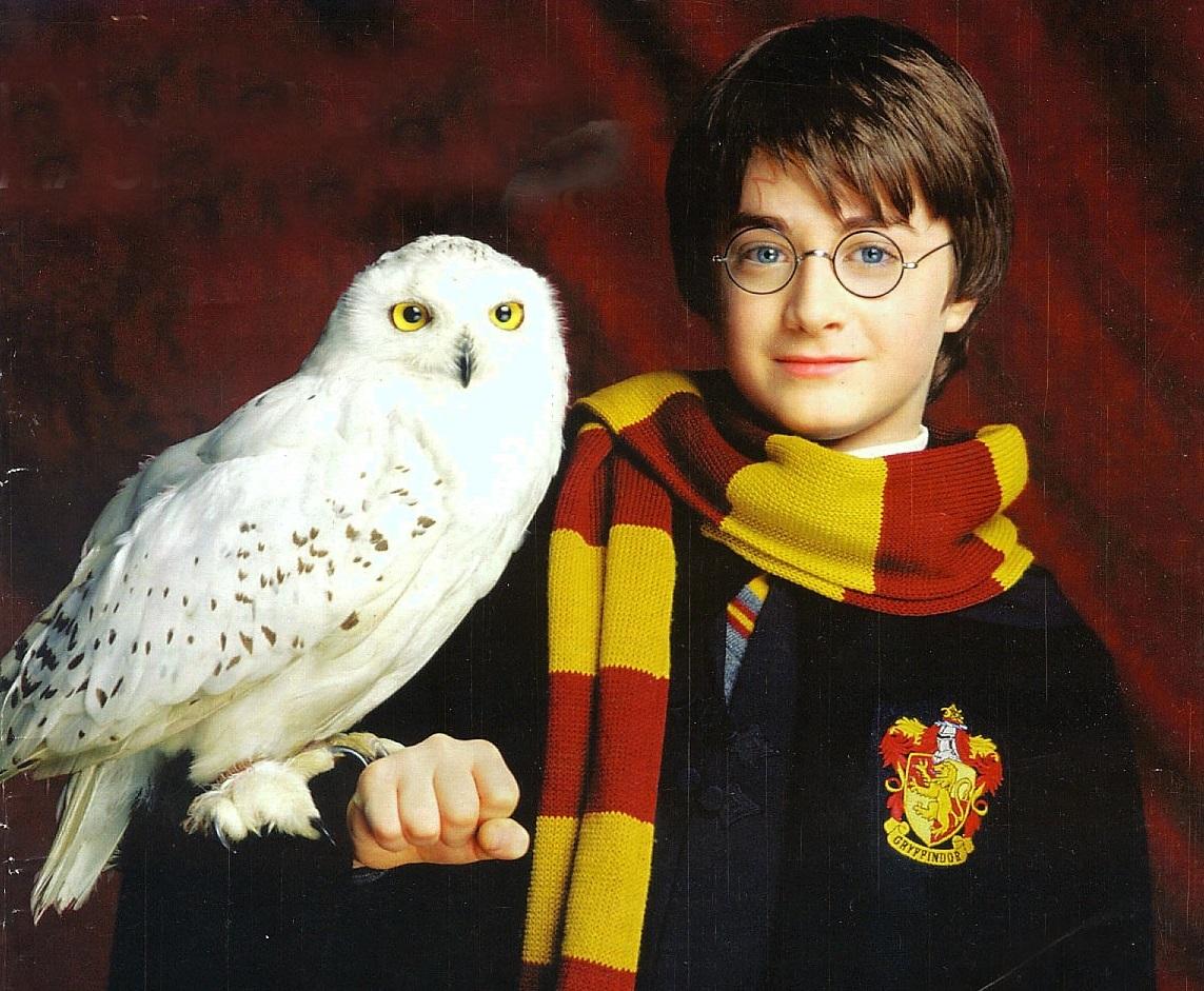 Concierto sinfónico Harry Potter será el 10 de septiembre