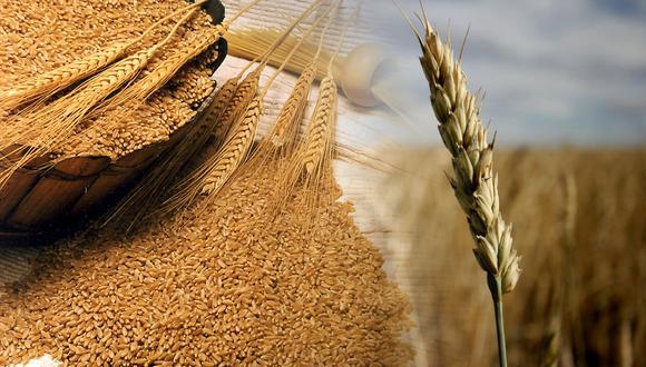 Los precios mundiales de los productos alimenticios repuntan en agosto