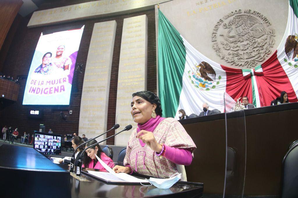 Morena destina el menor presupuesto para los pueblos indígenas en 20 años: diputada priista Eufrosina Cruz