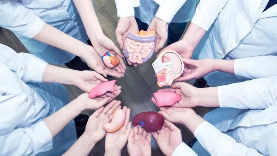 El COVID/19 ha complicado la donación de órganos en México